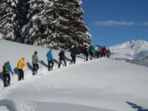 Schneeschuhtouren in Tirol