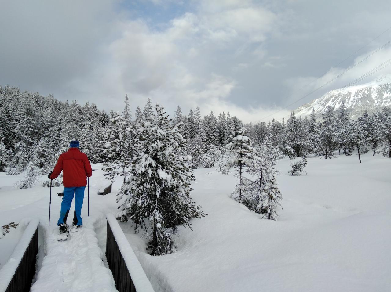 Piller Moor Schneeschuhwanderung