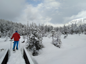PillerMoor Schneeschuhwanderung